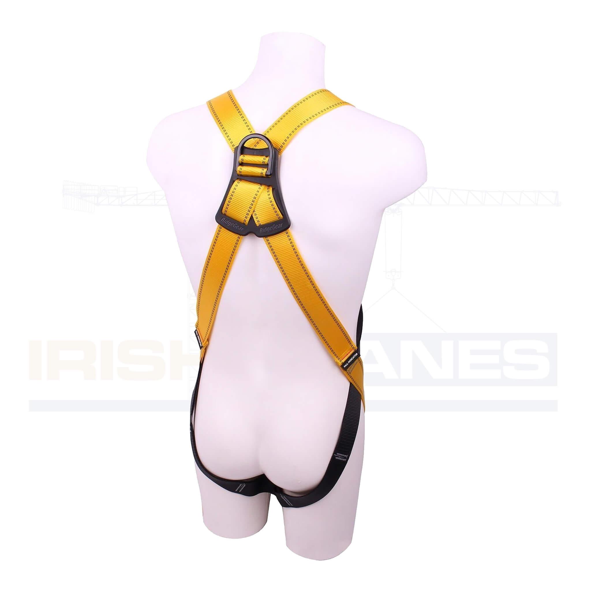 Ridgegear 2 point safety harness back